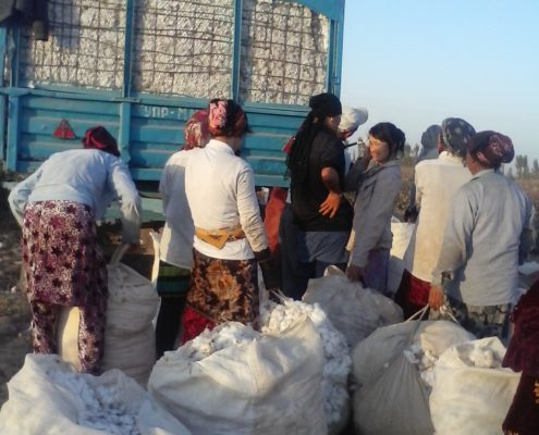 Cotton Pickers in Karakalpakstan