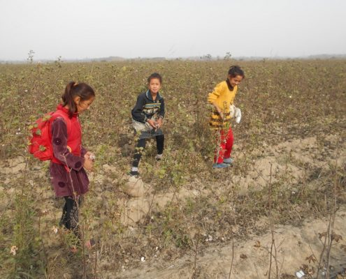 Children on the cotton fields. © UGF 2017